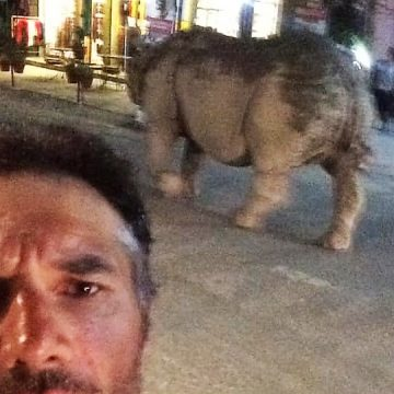 Pedro Bento está no Nepal e tem boas notícias