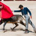 Almeirim contra proibição de touradas a menores de 16 anos